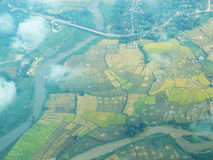 Paddy field and river in top view. On the plane Royalty Free Stock Photos