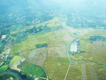 Paddy field and river in top view. On the plane Stock Photography
