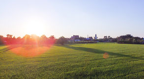 Paddy field with sunset. Ting behind Royalty Free Stock Photo