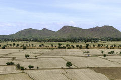 Paddy fields barren and empty Stock Photos