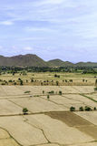 Paddy fields barren and empty Royalty Free Stock Photos