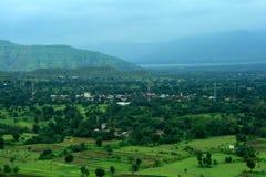 Paddy fields in monsoon season Stock Photography