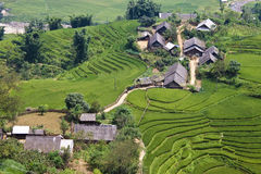 Paddy fields and small villages Royalty Free Stock Photos