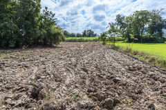 Paddy fields and tiller Royalty Free Stock Photos