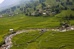 Paddy fields and villages Stock Photo
