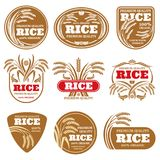 Paddy grain organic rice labels. Healthy food vector logos isolated vector illustration