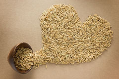 Paddy in heart shape Royalty Free Stock Photos