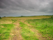 paddy krajobrazu Zdjęcia Royalty Free