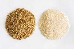 Paddy rice,brown rice,white rice Royalty Free Stock Photography