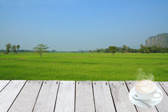 Paddy rice field Stock Photo
