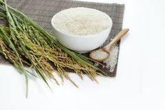 Paddy and rice grain. Over bamboo mat Royalty Free Stock Image