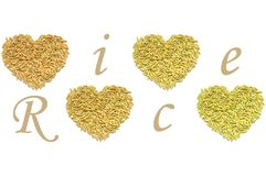 Paddy rice heart shape. On white background vector illustration