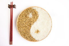 Paddy and rice in the plante Royalty Free Stock Image
