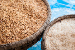 Paddy rice and rice in bamboo basket Royalty Free Stock Images