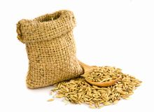 Paddy rice seed. Royalty Free Stock Image