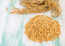 Paddy rice seed on wooden background Royalty Free Stock Photos