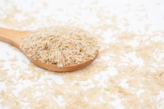 Paddy rice on wood ladle Stock Photos