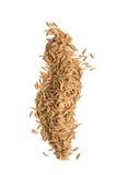 Paddy seed Stock Photo