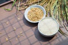 Paddy Seeds orgánico, arroz y arroz blanco en el fondo de madera fotos de archivo