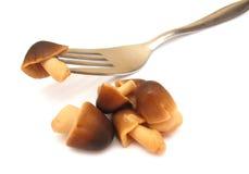 Paddy Straw Mushrooms Stock Image