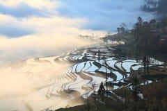 Paddyfield y aldea de la terraza de Hani en niebla Foto de archivo libre de regalías