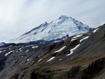 Padeiro da montagem do lagópode dos Alpes Ridge, Washington Imagem de Stock