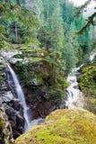Padeiro National Forest Whatcom County WA da montagem das quedas de Nooksack Fotografia de Stock Royalty Free