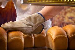 Padeiro que cozinha o pão foto de stock royalty free