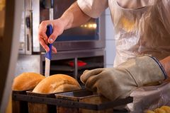 Padeiro que cozinha o pão imagem de stock