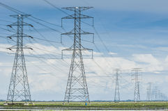 Padi field. Towers of power lines crossing the padi field royalty free stock photography
