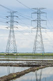 Padi field. Towers of power lines crossing the padi field stock image