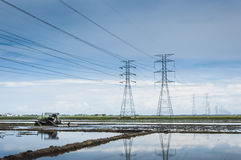 Padi field. Towers of power lines crossing the padi field stock images