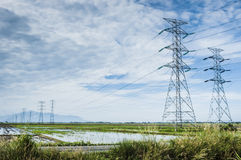 Padi field. Towers of power lines crossing the padi field stock photography