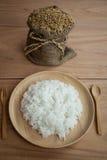 Padie en Gestoomde rijst in plante Royalty-vrije Stock Afbeeldingen