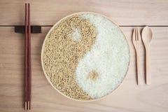 Padie en rijst in plante Stock Afbeeldingen