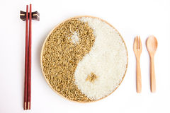 Padie en rijst in plante Stock Fotografie