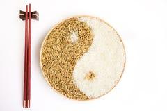 Padie en rijst in plante Royalty-vrije Stock Afbeelding