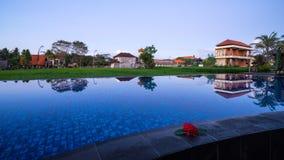 Padiegebieden in Ubud van Bali, Indonesië Royalty-vrije Stock Afbeeldingen