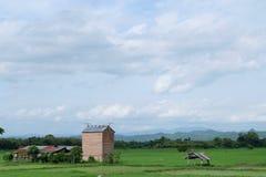 Padieveld Aziatische hemel-wolken Stock Foto