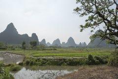 Padieveld en bergen, China Stock Fotografie