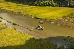 Padieveld en rivier in TamCoc, NinhBinh, Vietnam Royalty-vrije Stock Fotografie