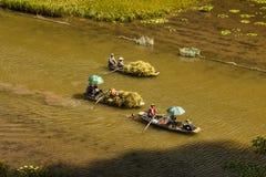 Padieveld en rivier in TamCoc, NinhBinh, Vietnam Stock Foto's