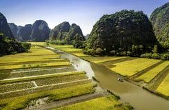 Padieveld en rivier in TamCoc, NinhBinh, Vietnam Stock Afbeeldingen