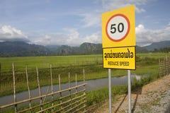 Padieveld, Laos Royalty-vrije Stock Foto's