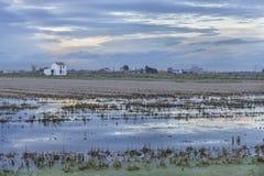 Padieveld met een plattelandshuisje in Albufera van Valencia bij zonsondergang royalty-vrije stock foto's
