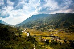 Padievelden in Noordwestenvietnam royalty-vrije stock foto