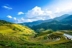 Padievelden op terras in regenachtig seizoen bij La Pan Tan, Mu Cang Chai Royalty-vrije Stock Foto