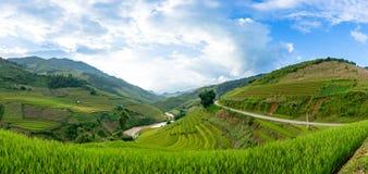 Padievelden op terrasvormig van Mu Cang Chai, Vietnam Royalty-vrije Stock Foto's