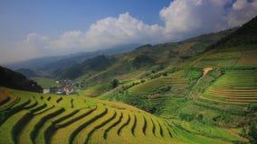 Padievelden op terrasvormig van Mu Cang Chai, YenBai, Vietnam stock video