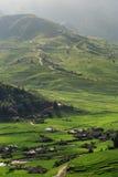Padievelden op terrasvormig van Turkije Le, YenBai, Vietnam Royalty-vrije Stock Foto's